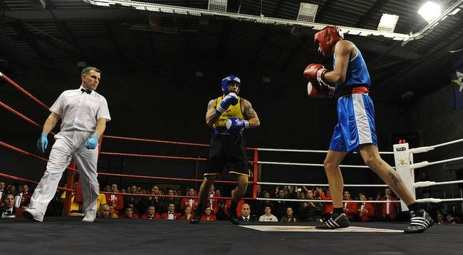2 boxers in boxing match about to fight.